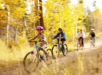 bike rentals at mountain sports center in lake tahoe