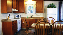 studebaker lake tahoe cabin kitchen